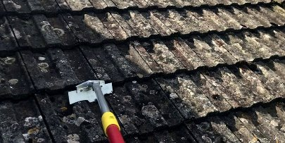 roof cleaners near waltham forest
