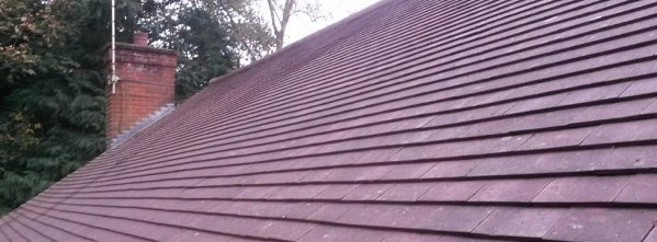 roof cleaners bexley